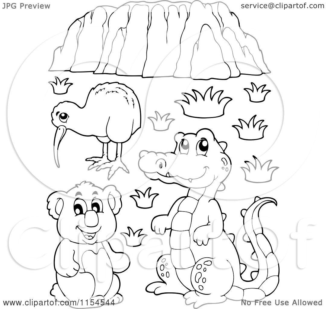Kiwi Cartoon Drawing Cartoon of an Outlined Kiwi