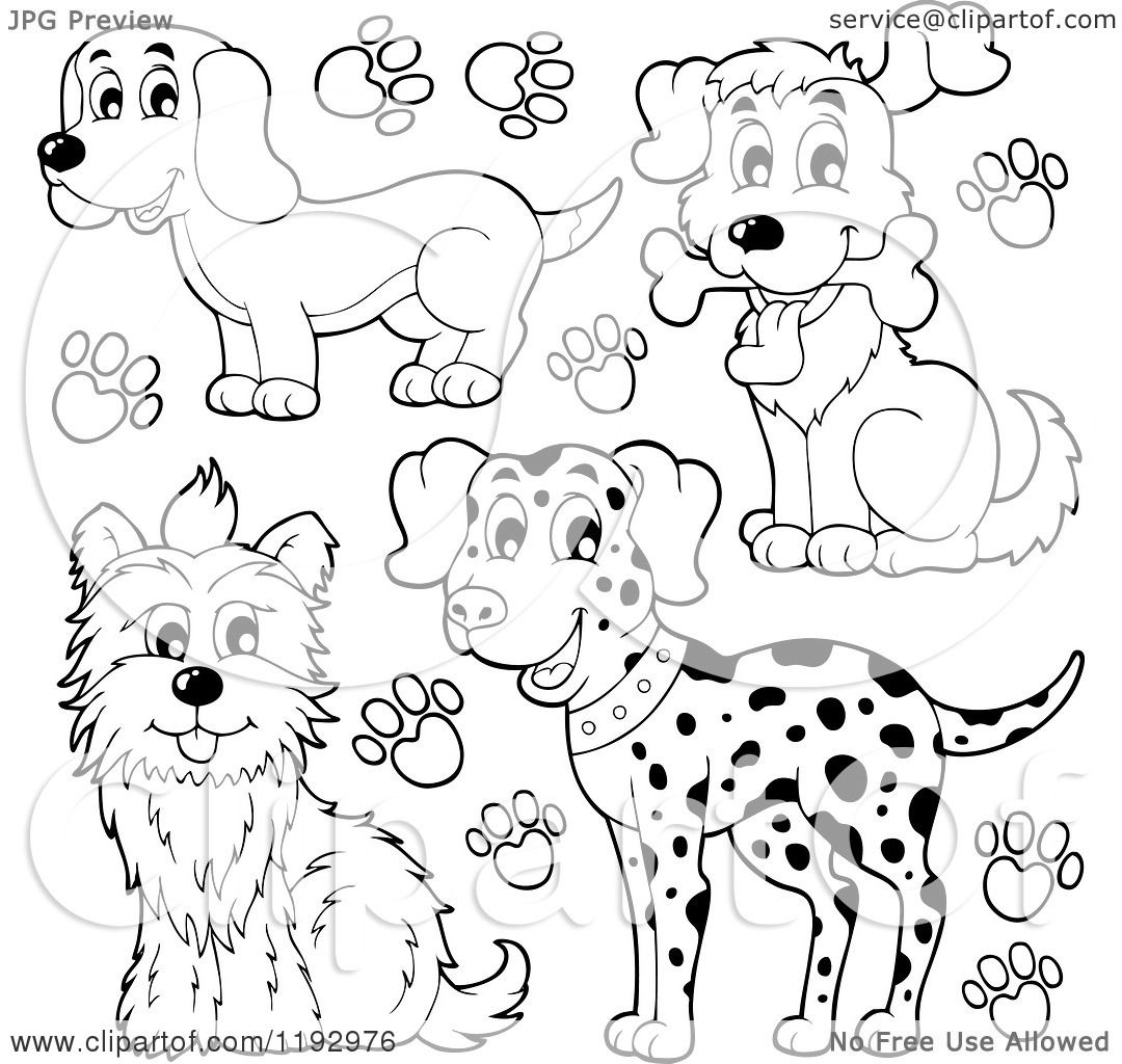 Cartoon of Black and White Happy Dogs and Paw Prints ...