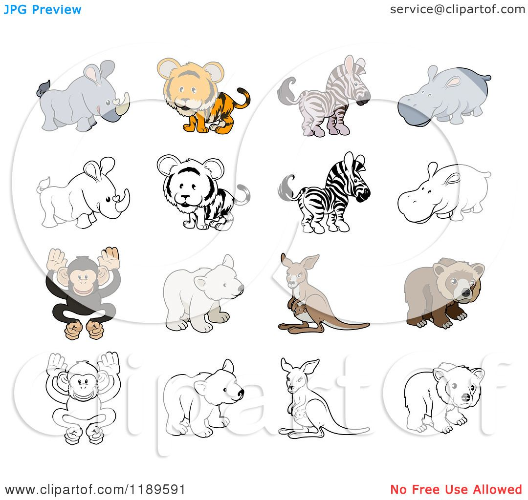 Cartoon Of Cute Wild Animals In Color And Black And White Royalty