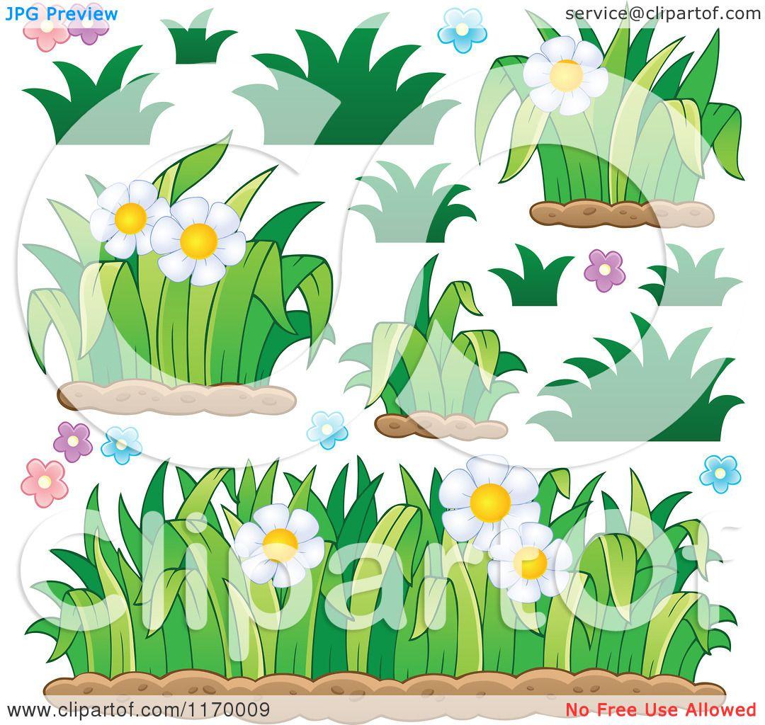 Cartoon of daisy flowers and grss royalty free vector clipart by cartoon of daisy flowers and grss royalty free vector clipart by visekart izmirmasajfo