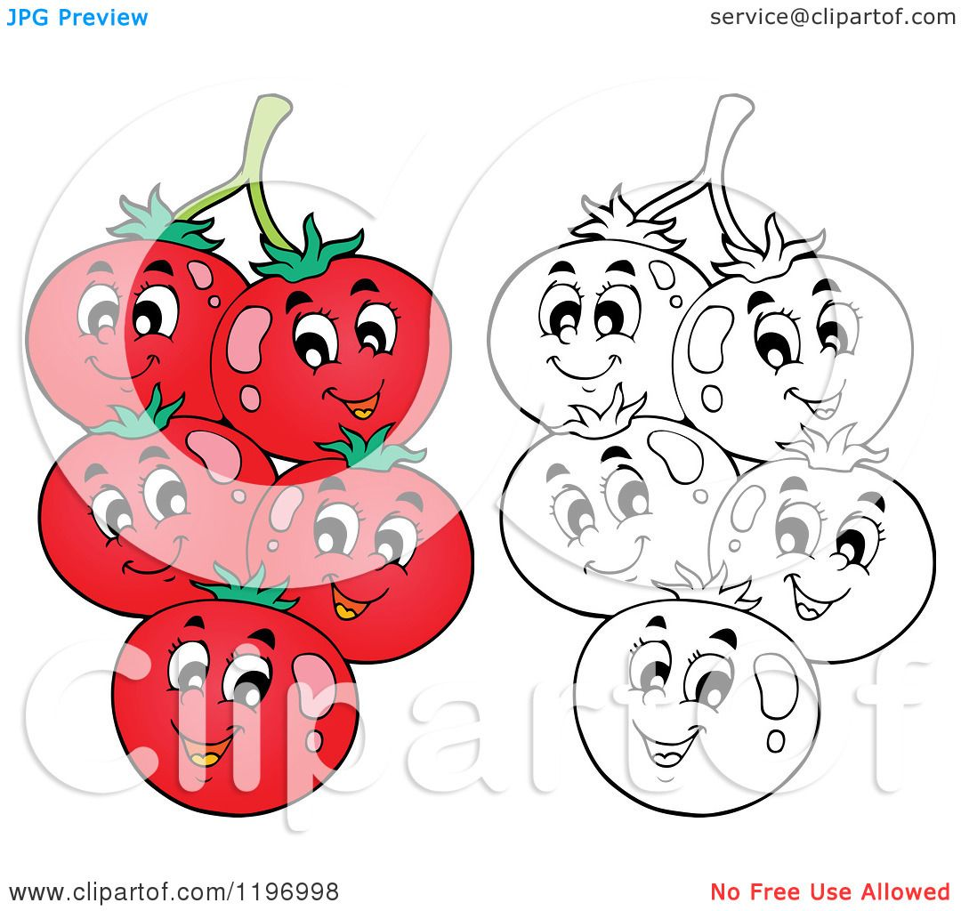 Cartoon of Happy Red and Outlined Tomatoes on the Vine ...