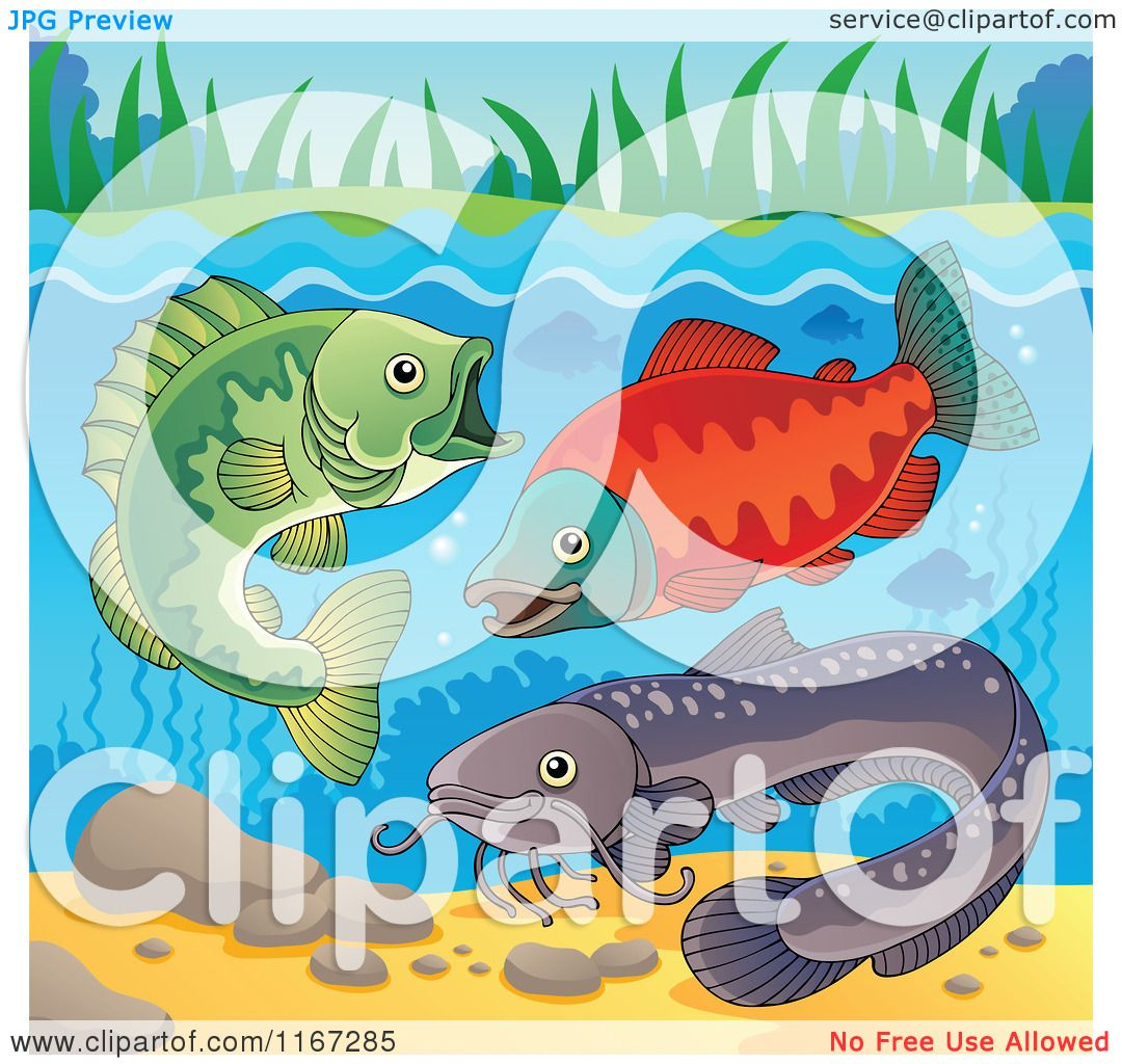 Cartoon of River Fish Underwater