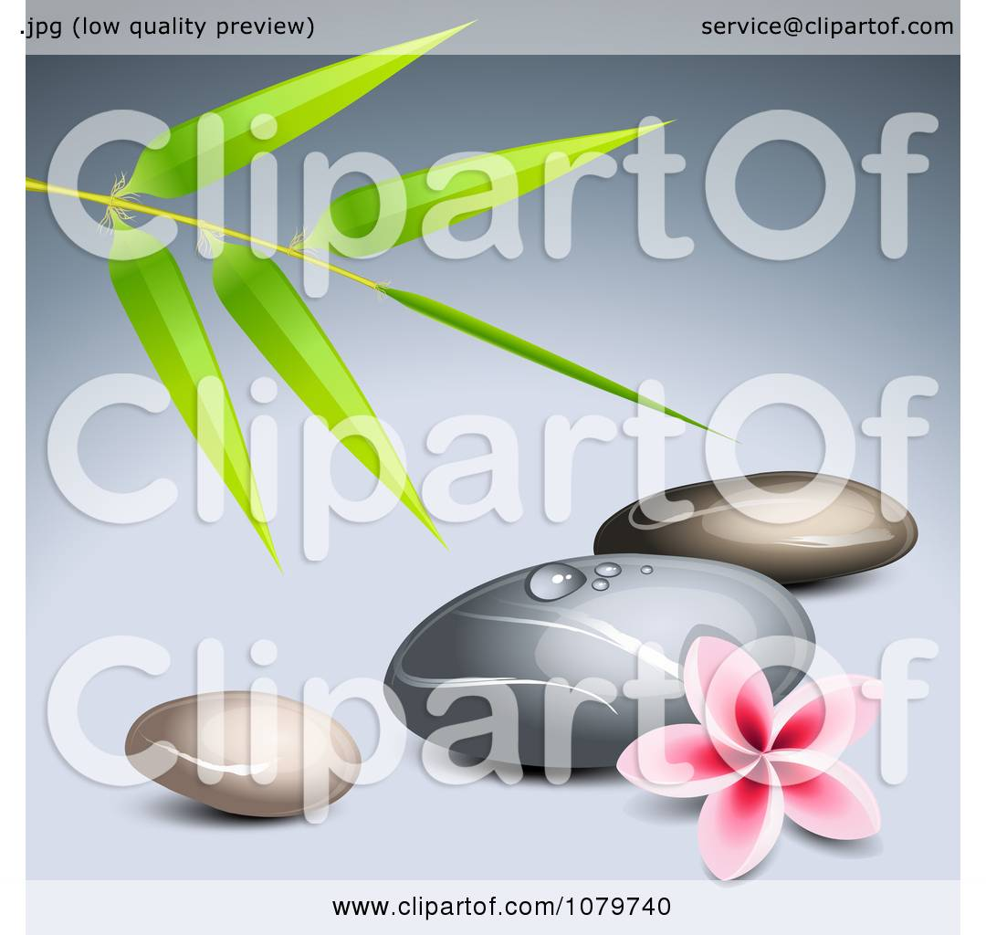 Frangipani spa flowers stock photo image 14654190 - Clipart 3d Frangipani Flower With Bamboo And Spa Stones