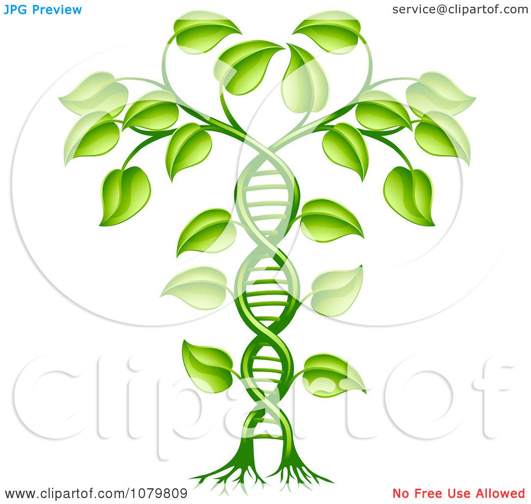 research papers dna cloning