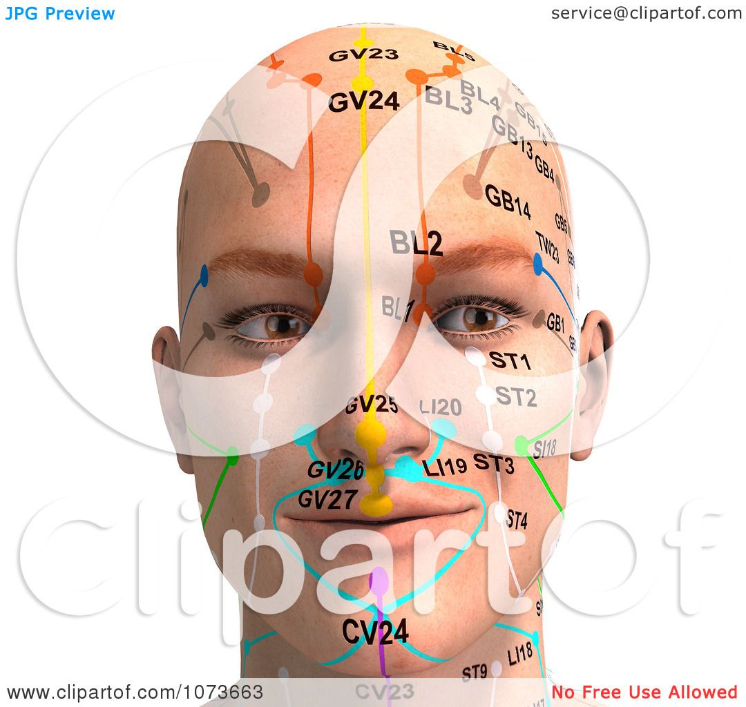 Clipart 3d Male Acupressure Chart Head 3 - Royalty Free ...
