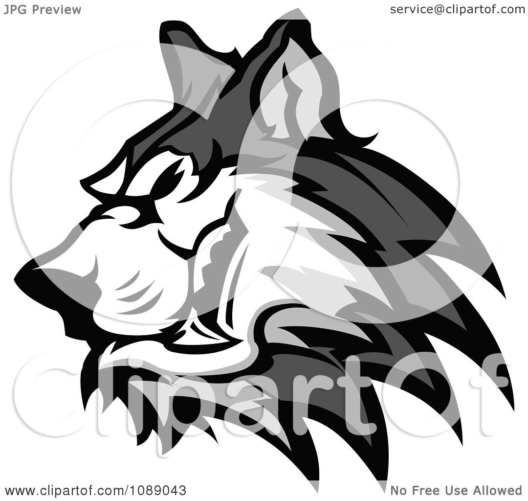 Clipart Aggressive Husky Dog Mascot - Royalty Free Vector ...