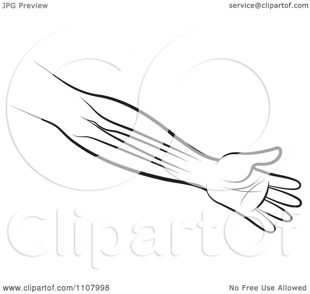An Outlined Human Arm And Hand Showing The Bones 1107998 on 8 dogs illustration