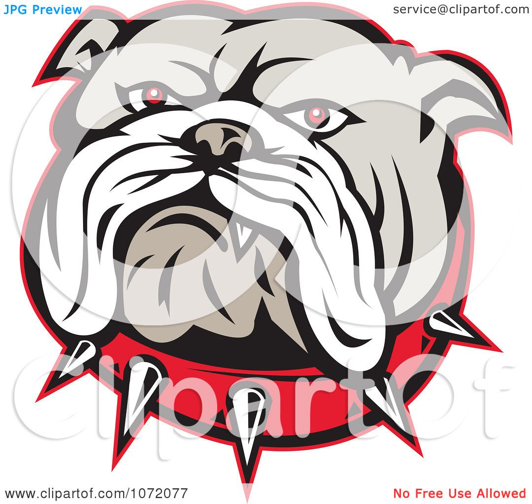 Clipart Angry Bulldog Face And Spiked Collar