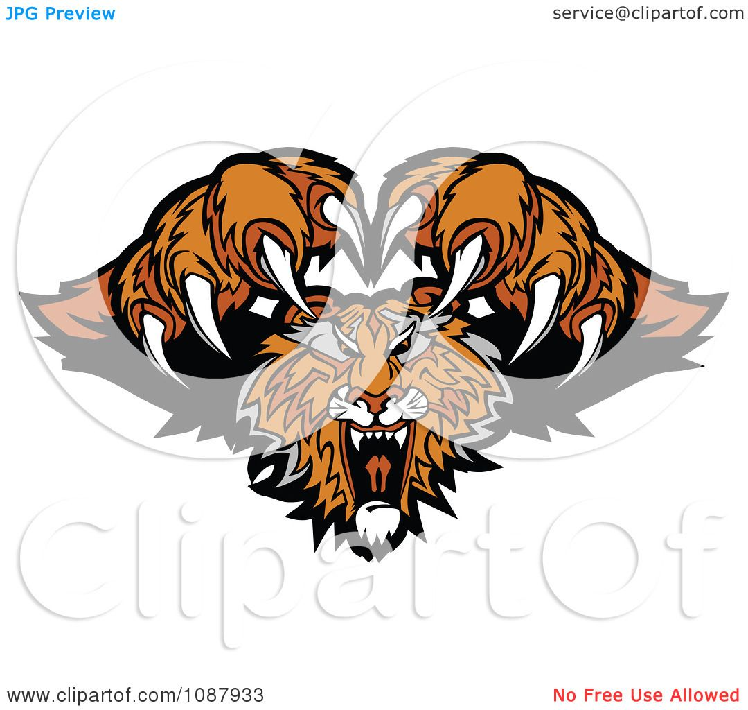 Clipart Attacking Tiger Mascot With Claws Royalty Free