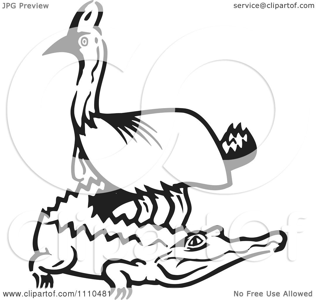Clipart Black And White Aussie Cassowary And Crocodile