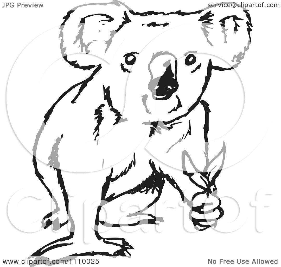 Koala Art And Design : Clipart black and white koala holding leaves royalty