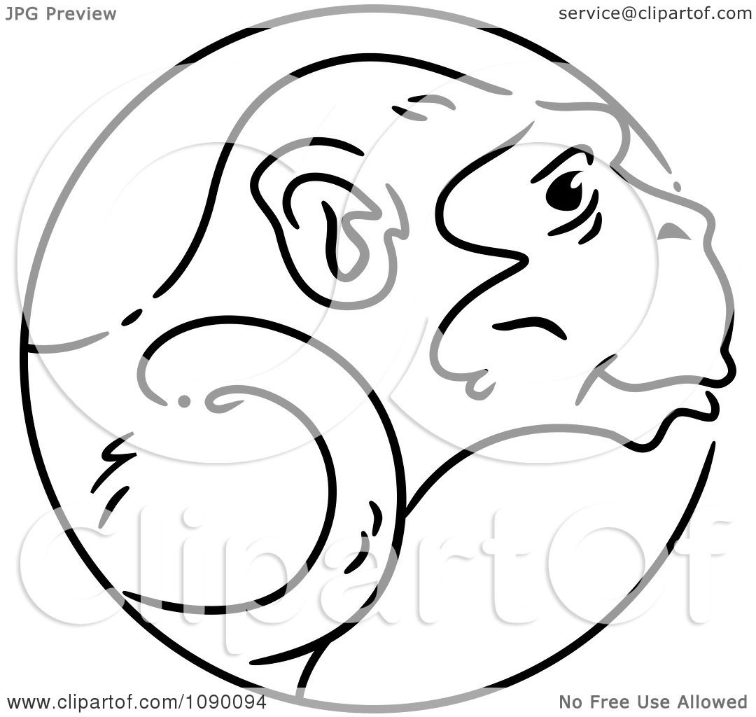 Animal Anatomy Coloring Pages
