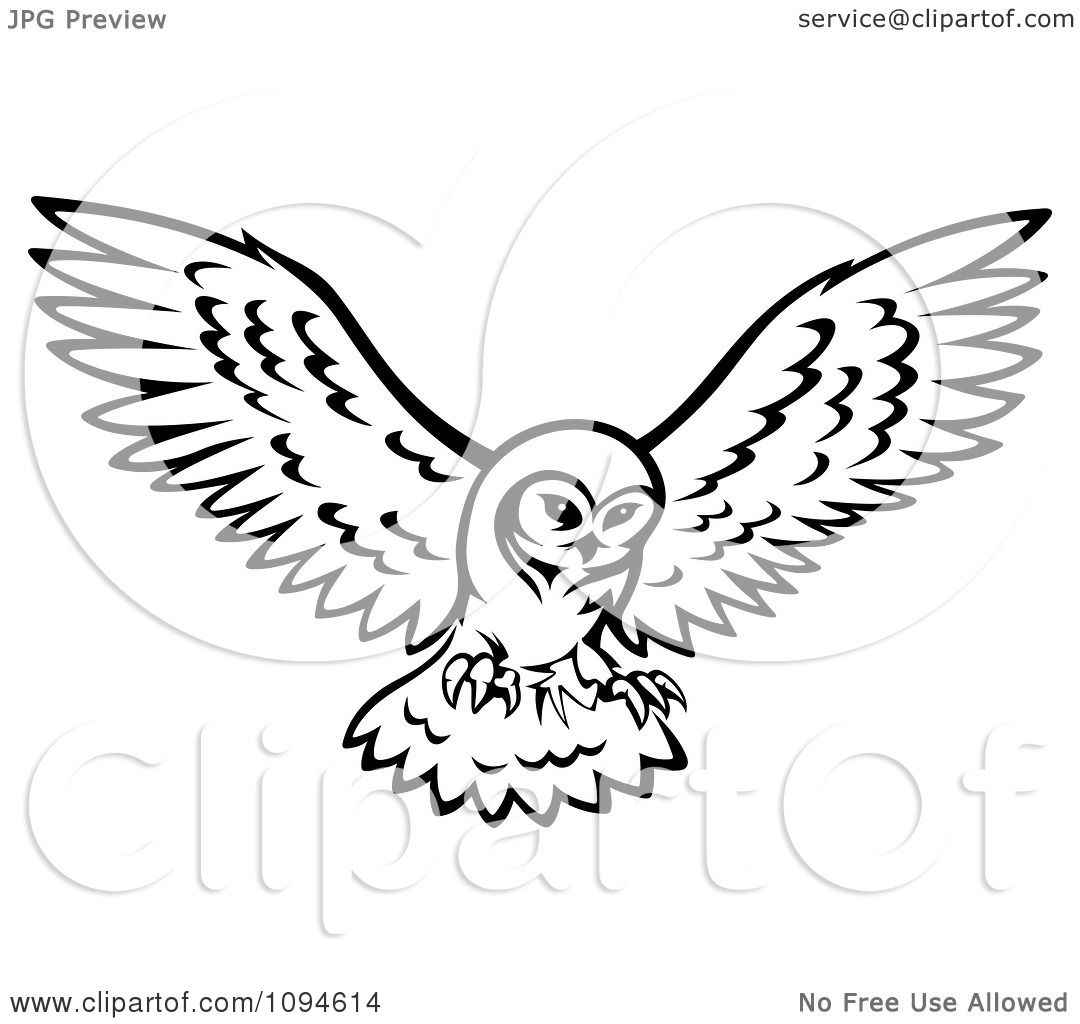 Flying owl drawings black and white - photo#21