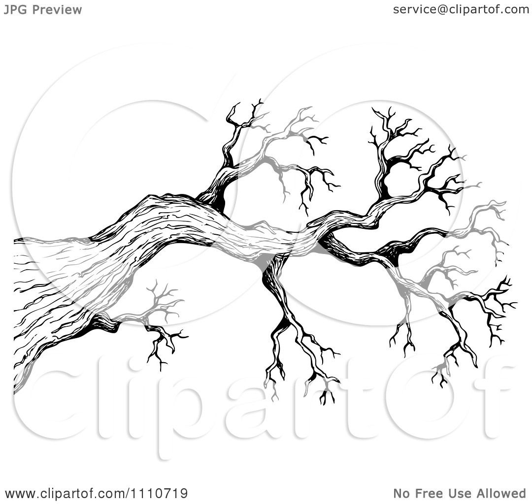 Tree Sketch : Tree Of People,
