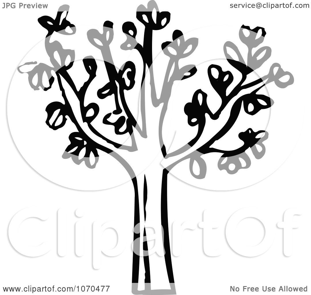 Clipart Black And White Tree - Royalty Free Vector ...