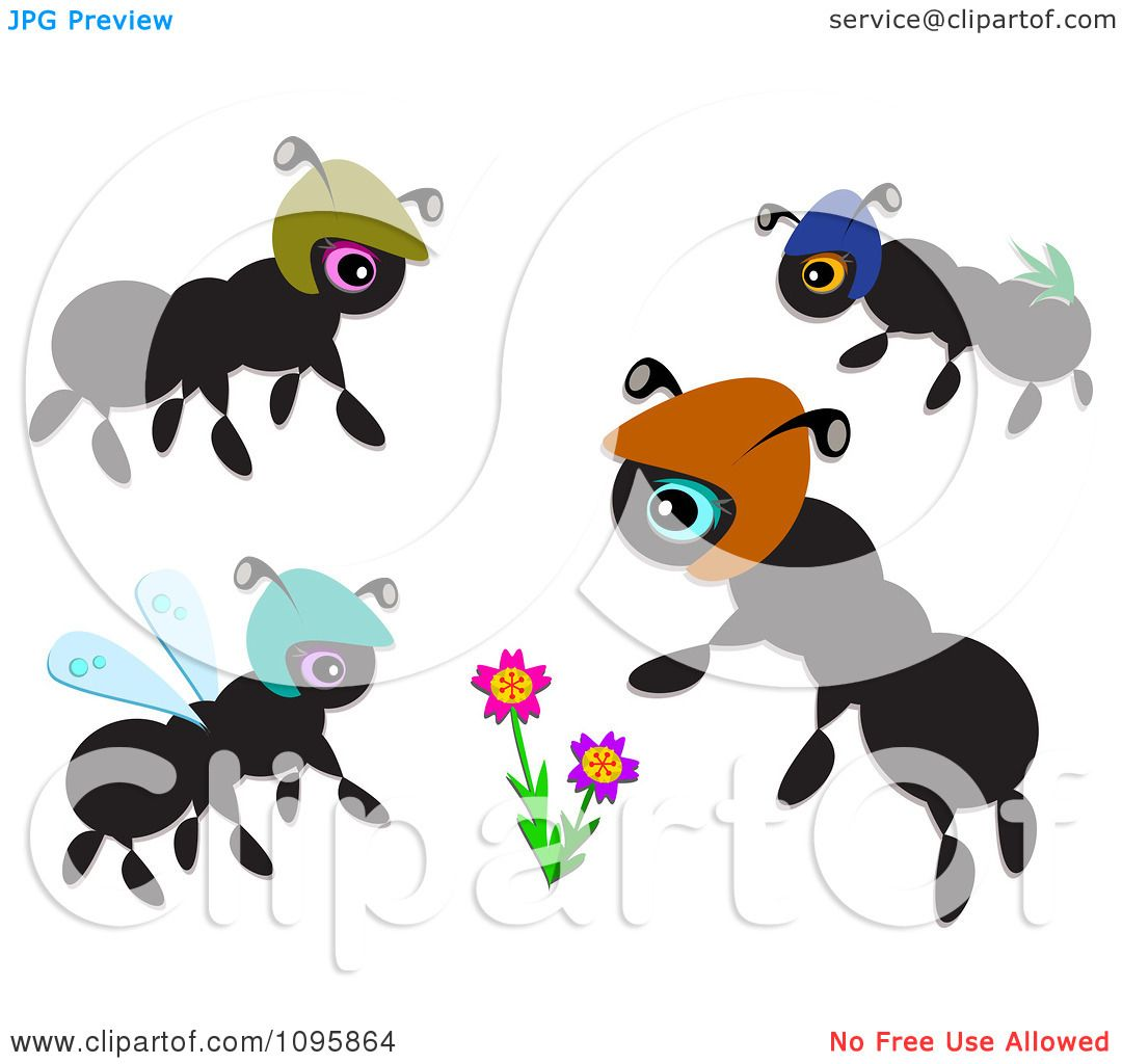 Black Ants Clipart Clipart Black Ants And Flowers