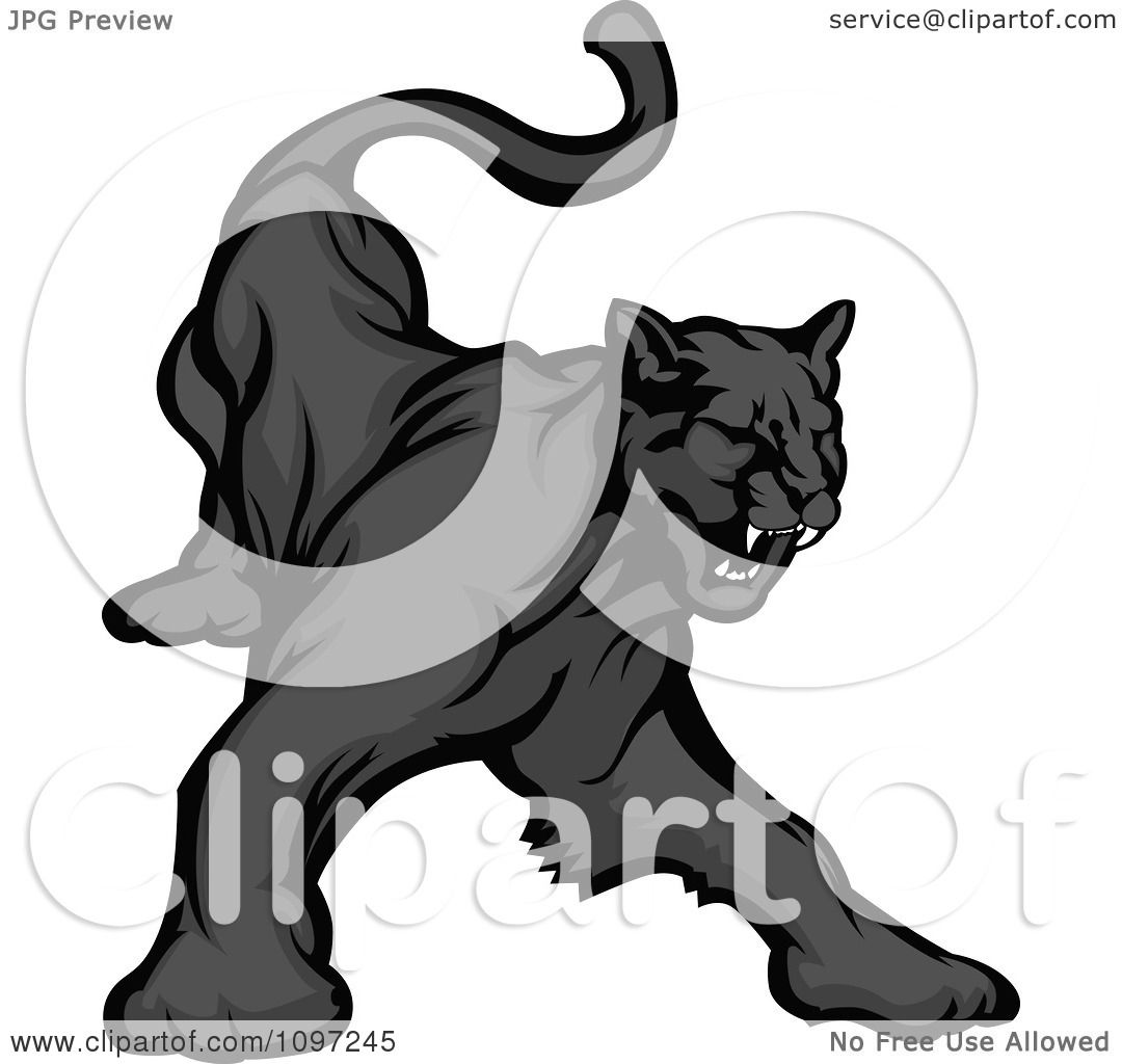 Black Panther Growling Royalty Free Stock Image: Clipart Black Panther Mascot Growling