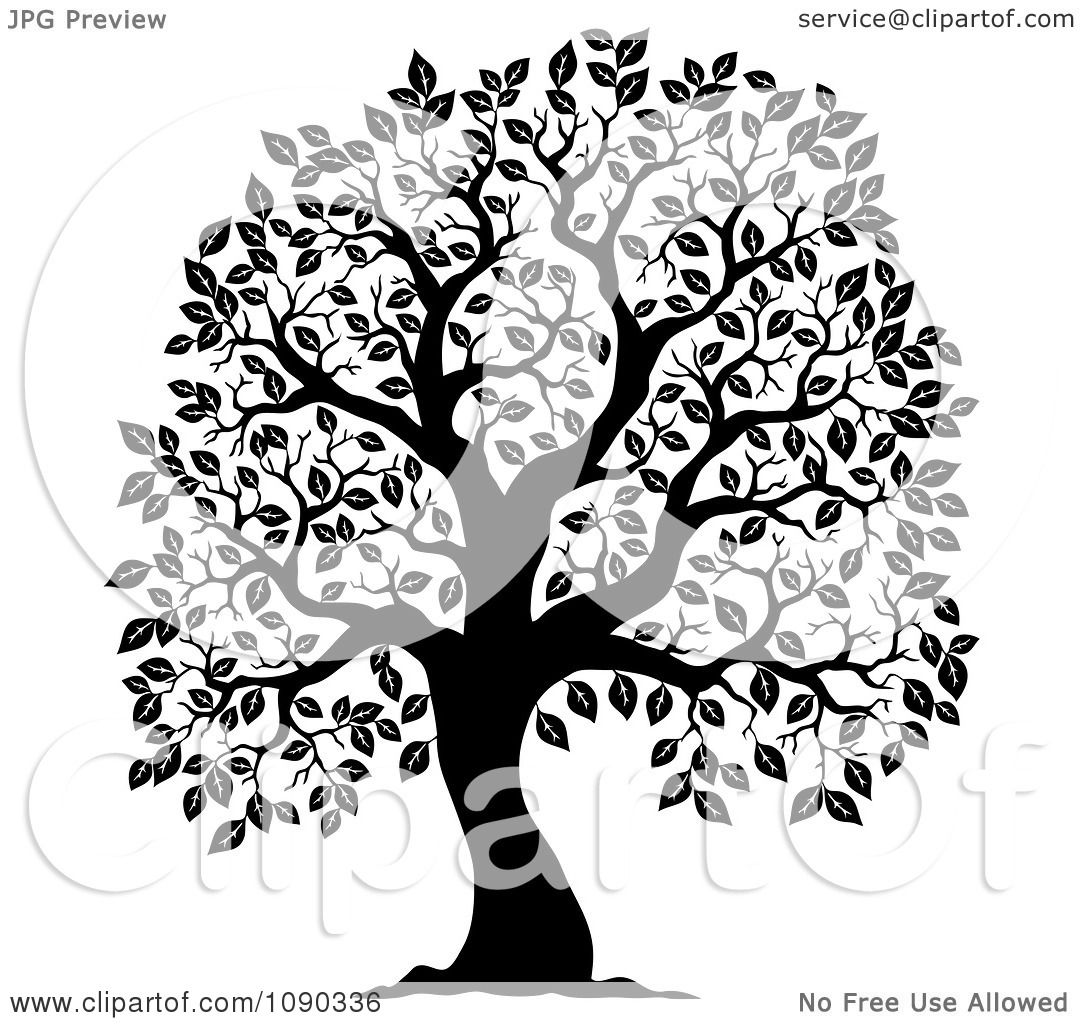Creepy Tree Silhouette Png Images & Pictures - Becuo