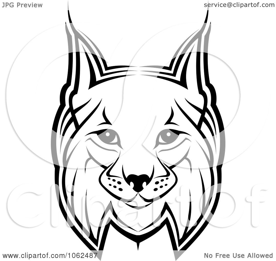 Clipart Bobcat In Black And White 1 - Royalty Free Vector ...