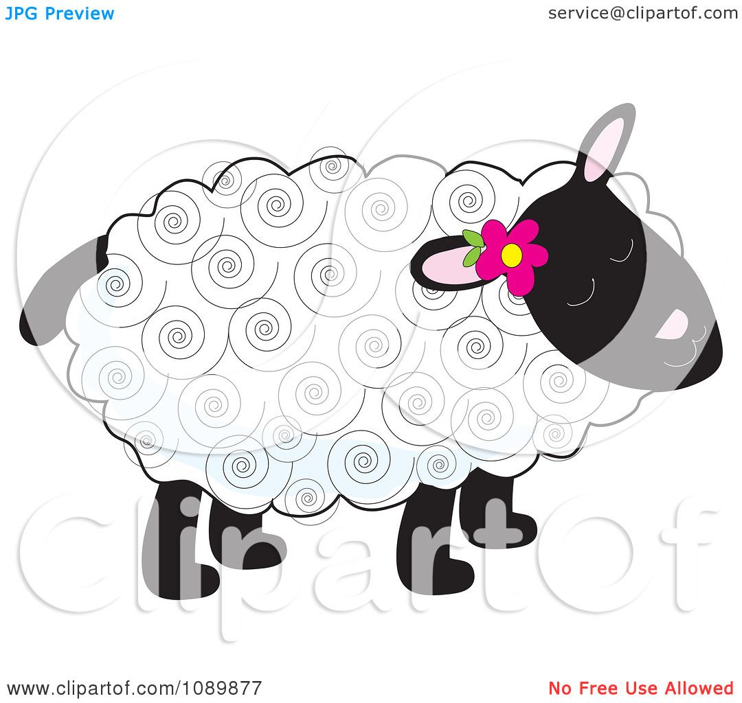 clipart curly haired lamb with a flower tucked behind an. Black Bedroom Furniture Sets. Home Design Ideas