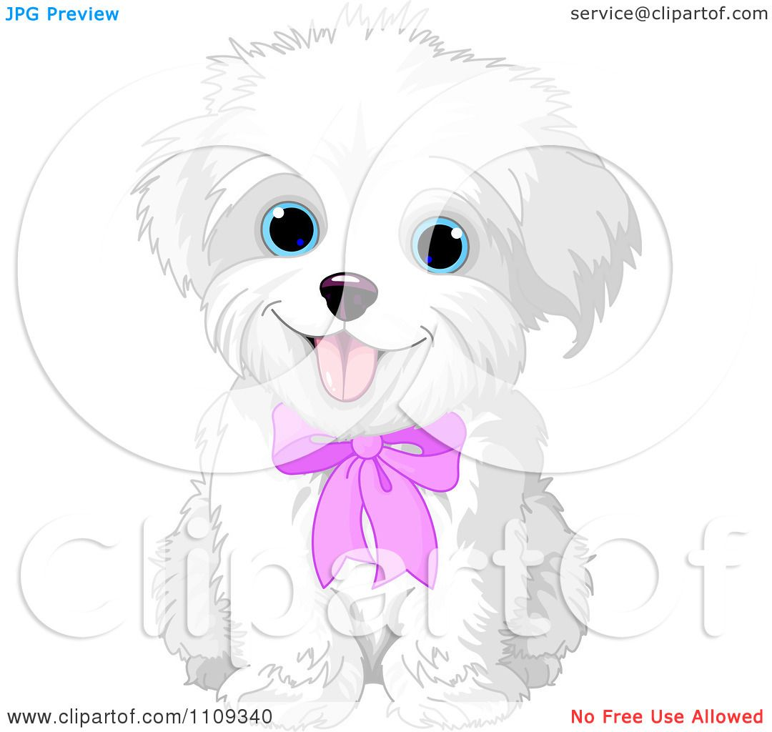 maltese dog clipart - photo #16