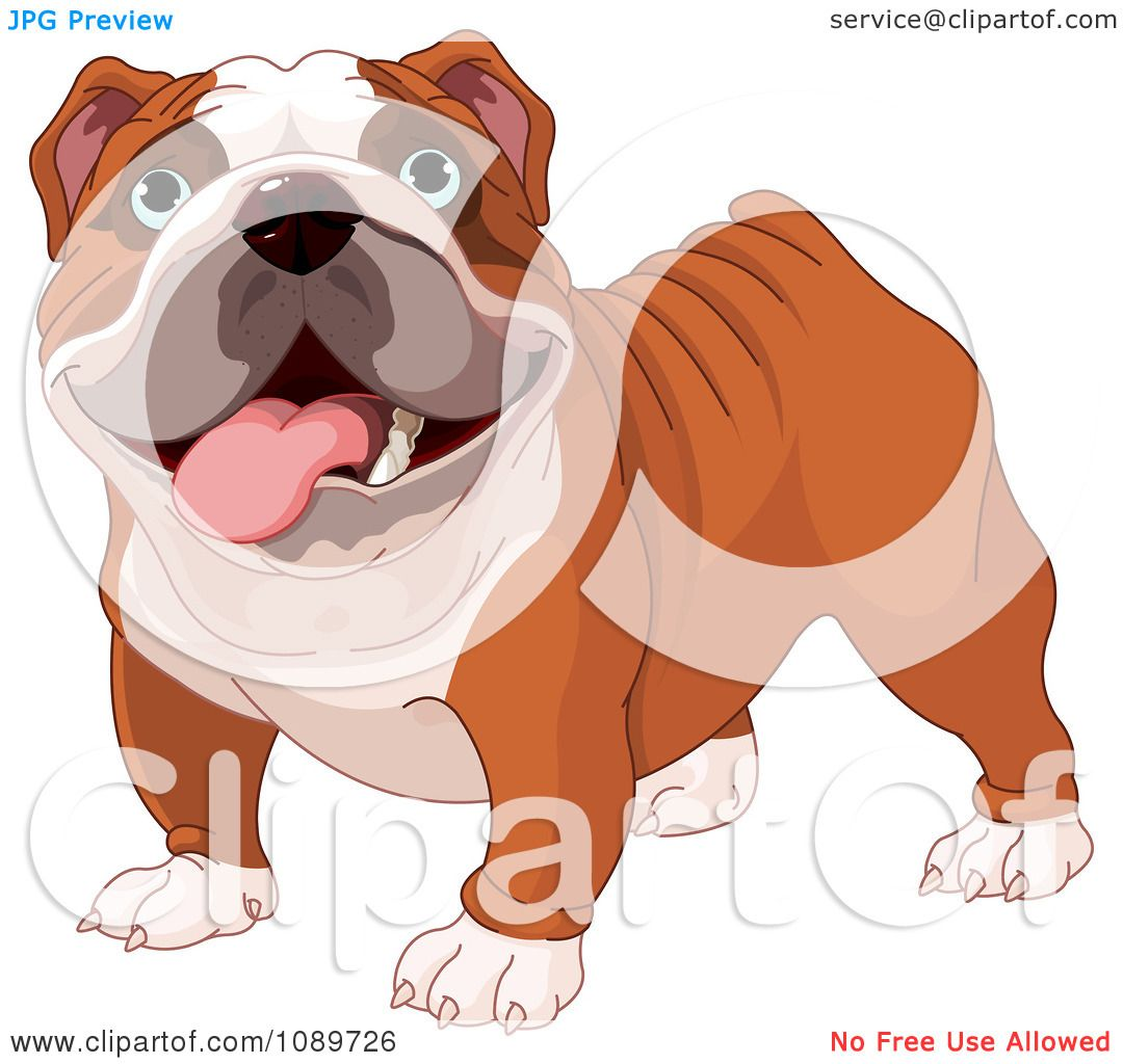Clipart Cute English Bulldog Standing - Royalty Free Vector ...