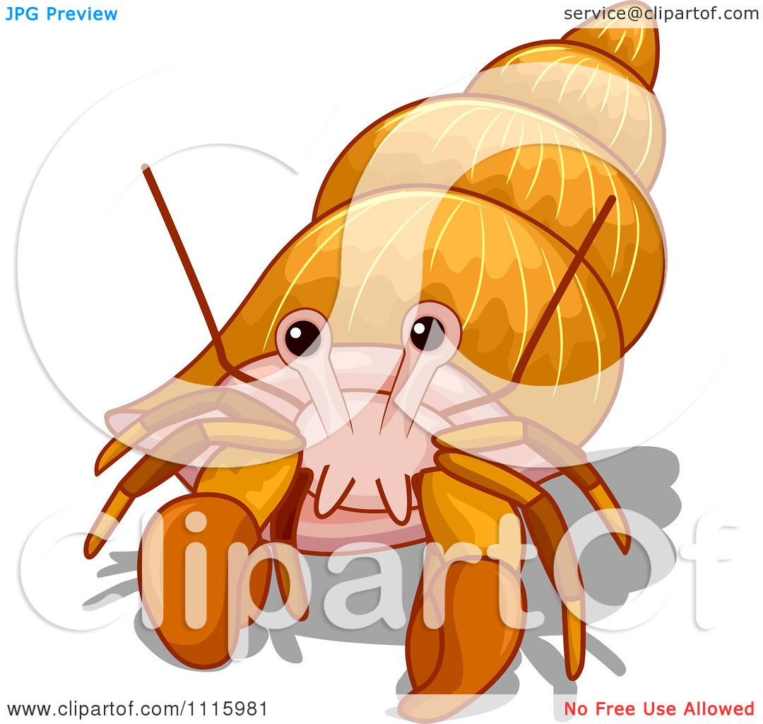 clipart cute hermit crab in a spiral shell royalty free vector