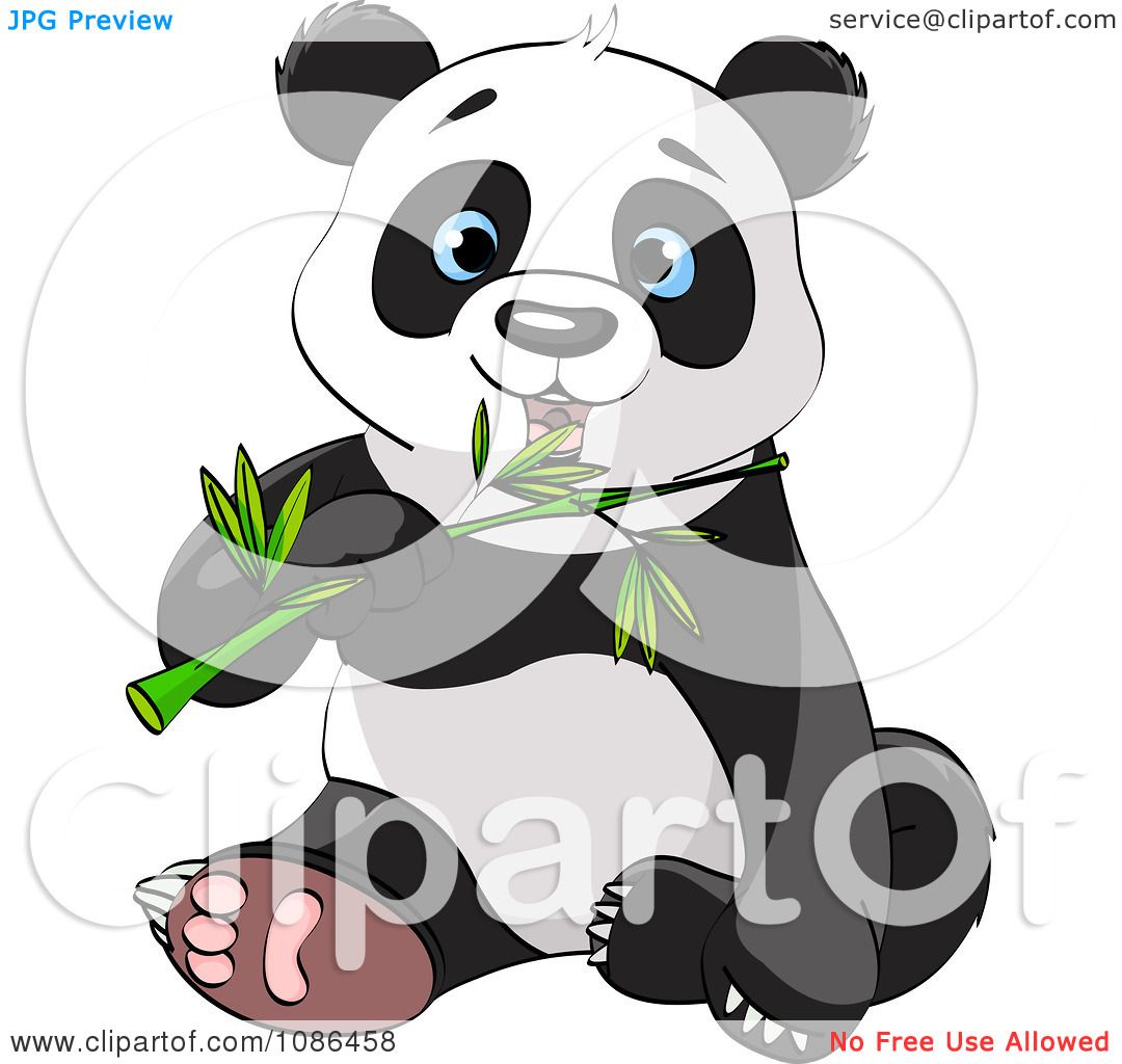 Clipart Cute Panda Sitting And Chewing On Bamboo - Royalty ...