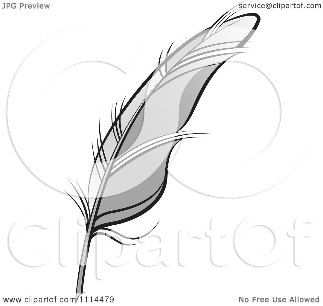 Clipart Gray Feather Quill - Royalty Free Vector ...
