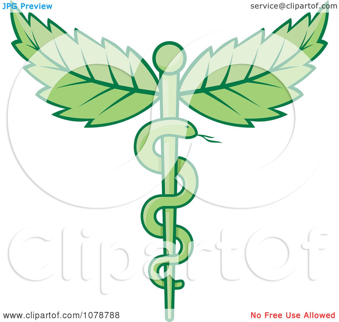 clipart green medical caduceus with leaves royalty free