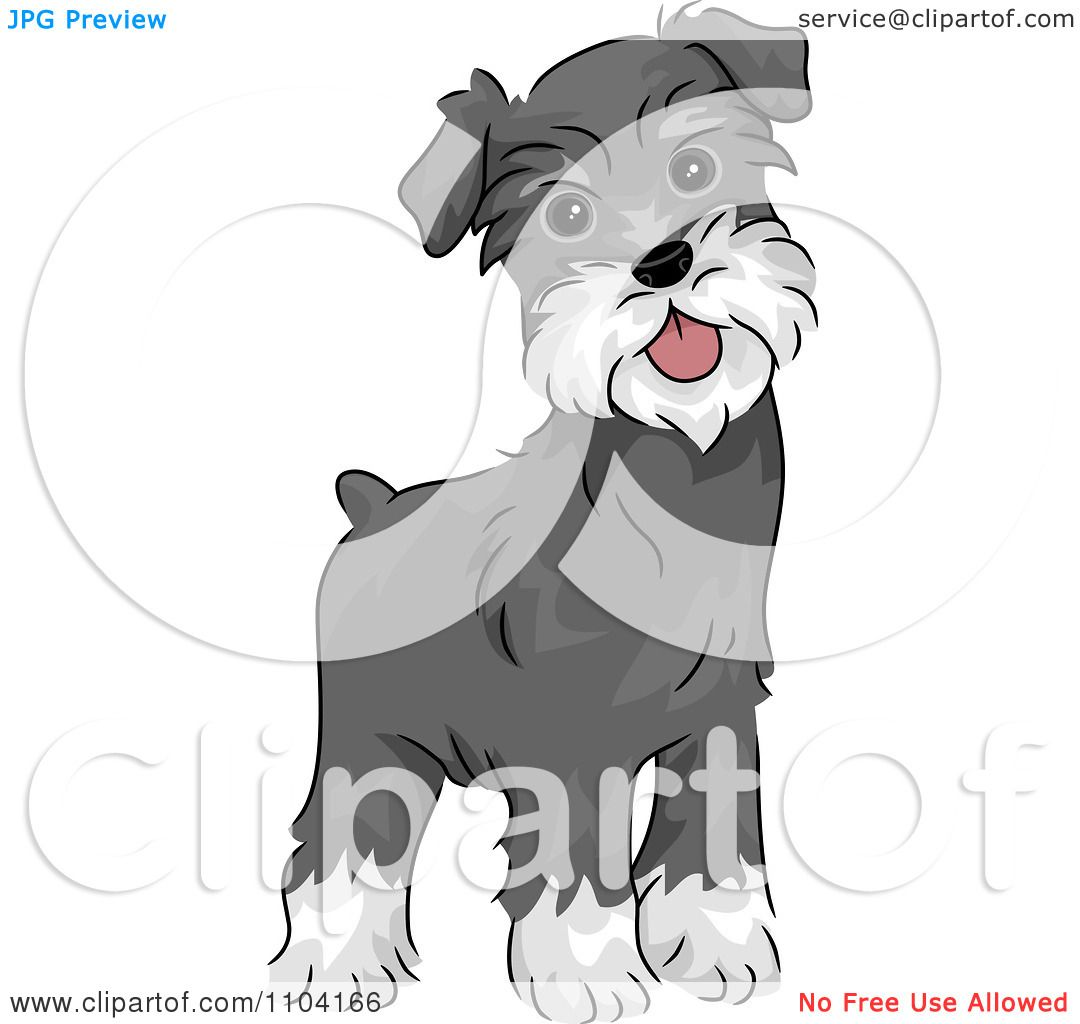 Clipart Happy Alert Miniature Schnauzer Dog