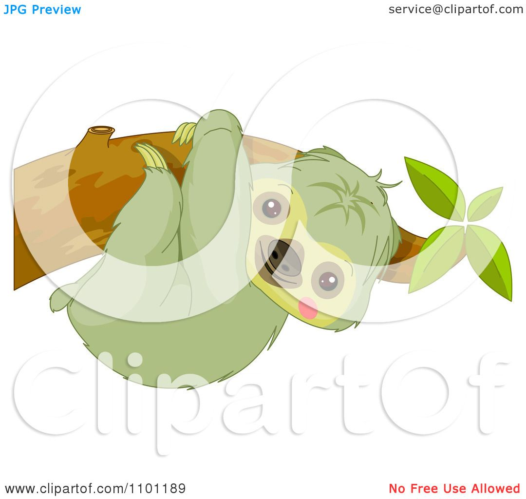 Clipart Happy Cute Sloth Hanging