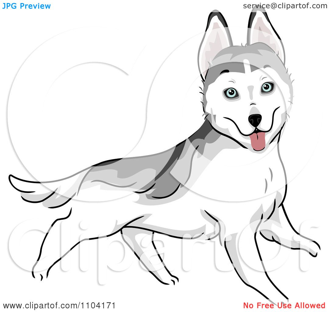 free clipart husky dog - photo #28