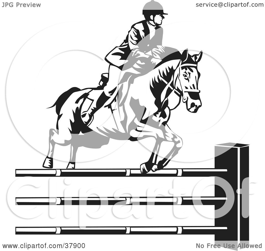 Clipart Illustration Of A Black And White Rider Leading A Horse To Jump Over Hurdles By David Rey 37900