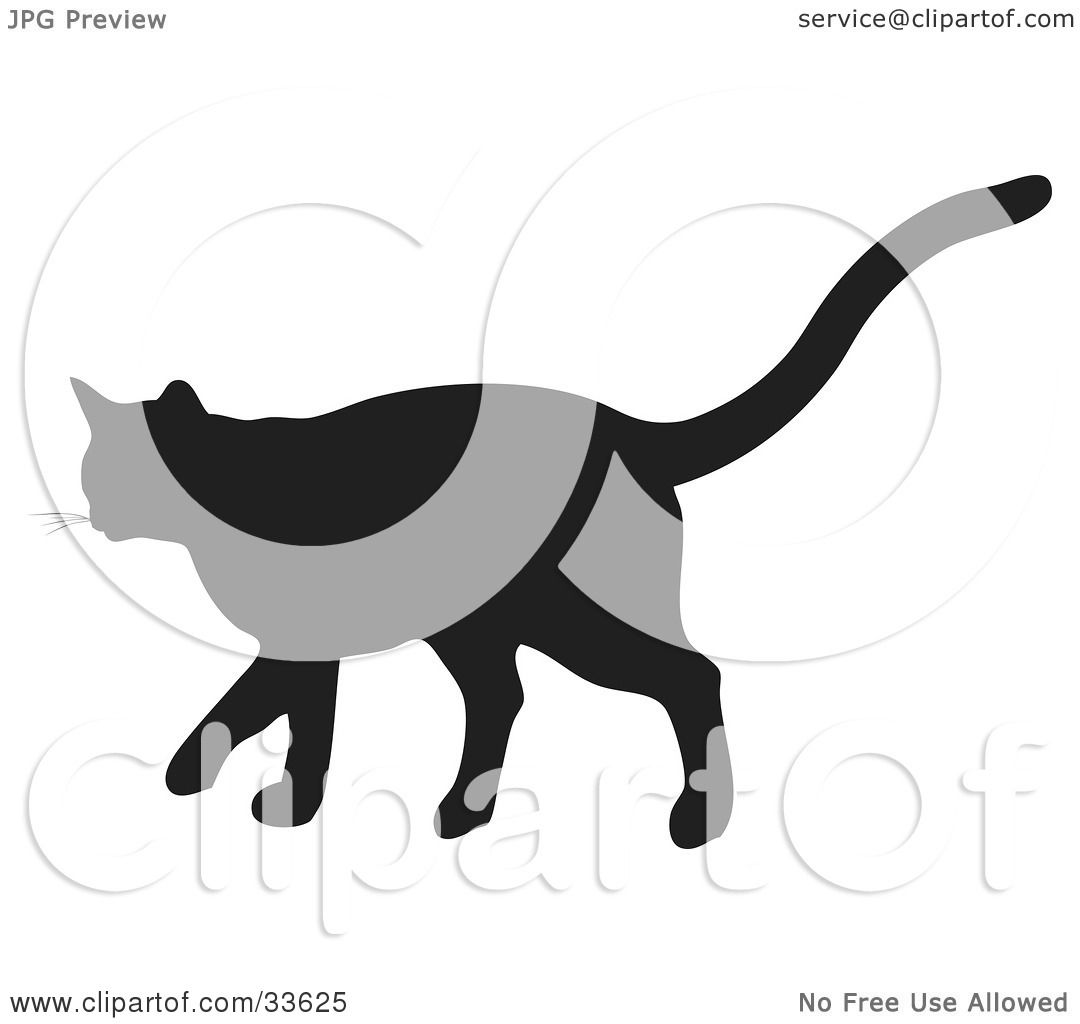 Galleries Related: Tiger Running Silhouette , Tiger Silhouette ...