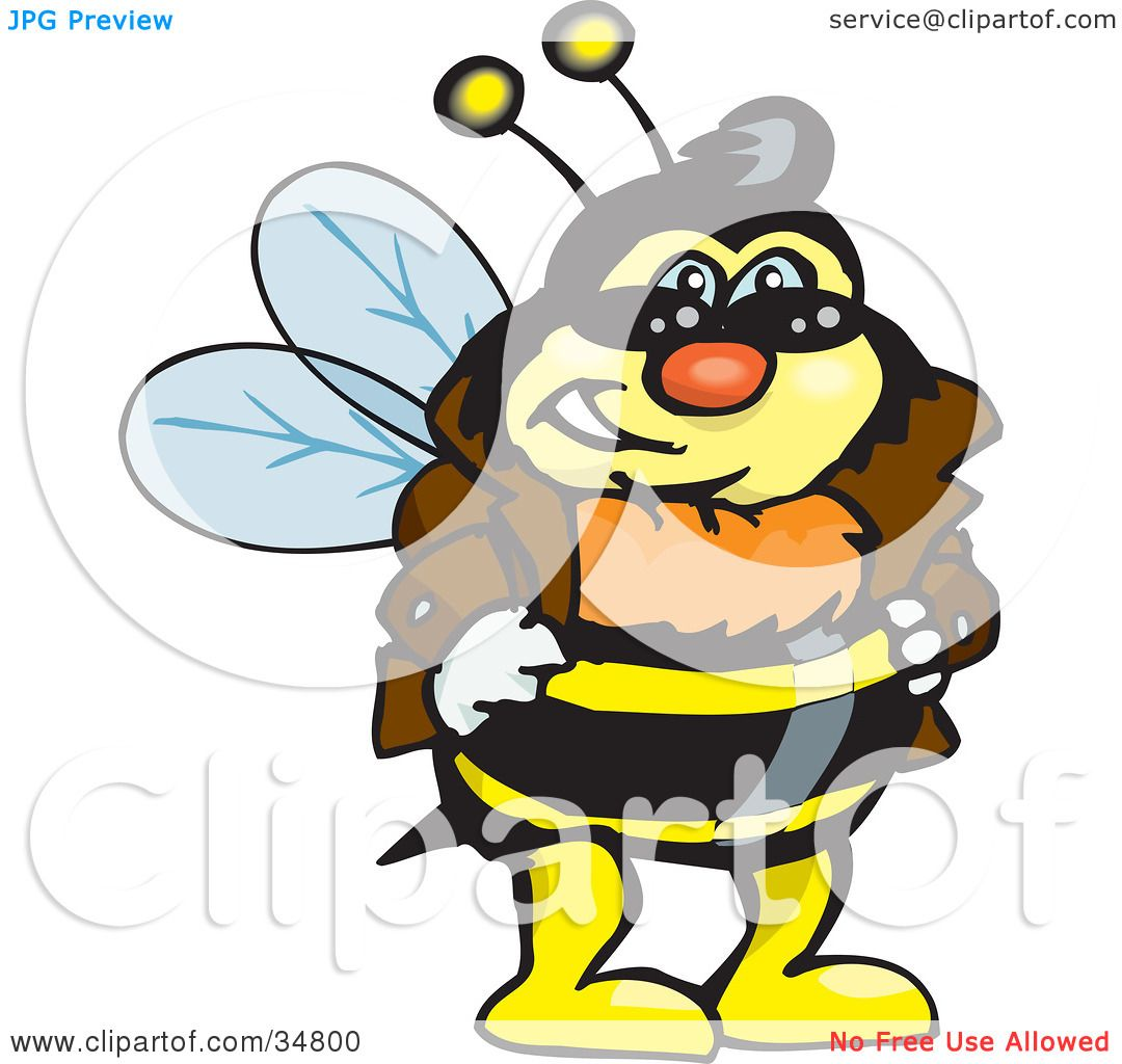 Leather jacket insect - Clipart Illustration Of A Bumble Bee Character In A Leather Jacket Wearing Shades And Resting His Hands On His Hips By Dennis Holmes Designs