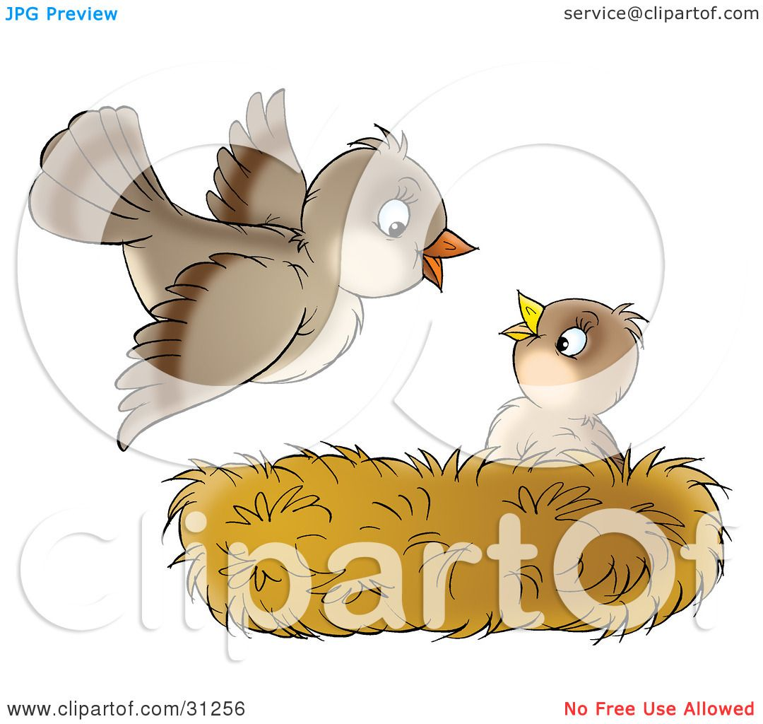 Clipart Illustration Of A Cute Baby Bird In A Nest