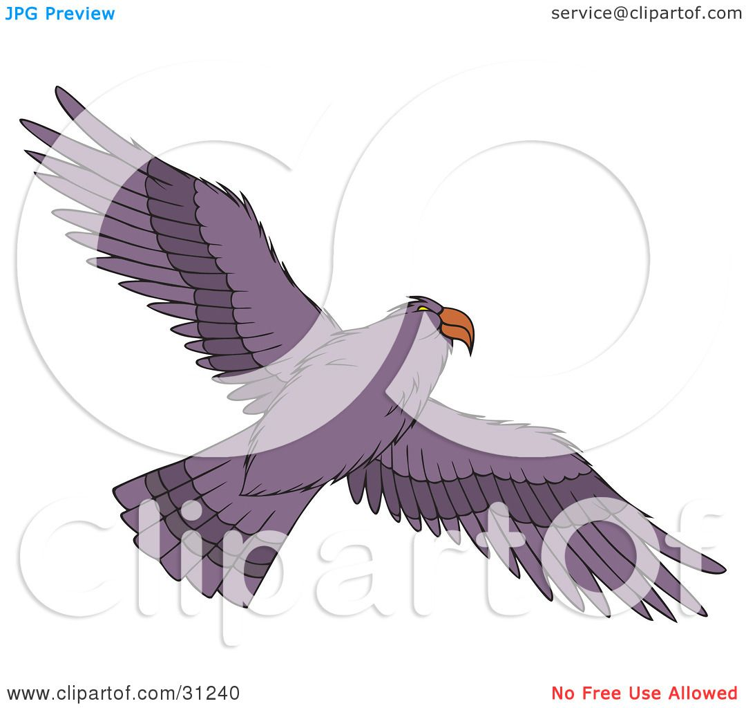 Clipart Illustration Of A Flying Purple Hawk As Seen From