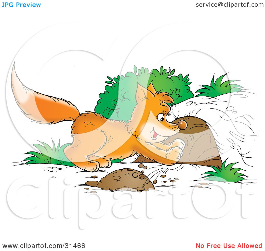 Clipart Illustration Of A Fox Kit Digging A Den Out Of A