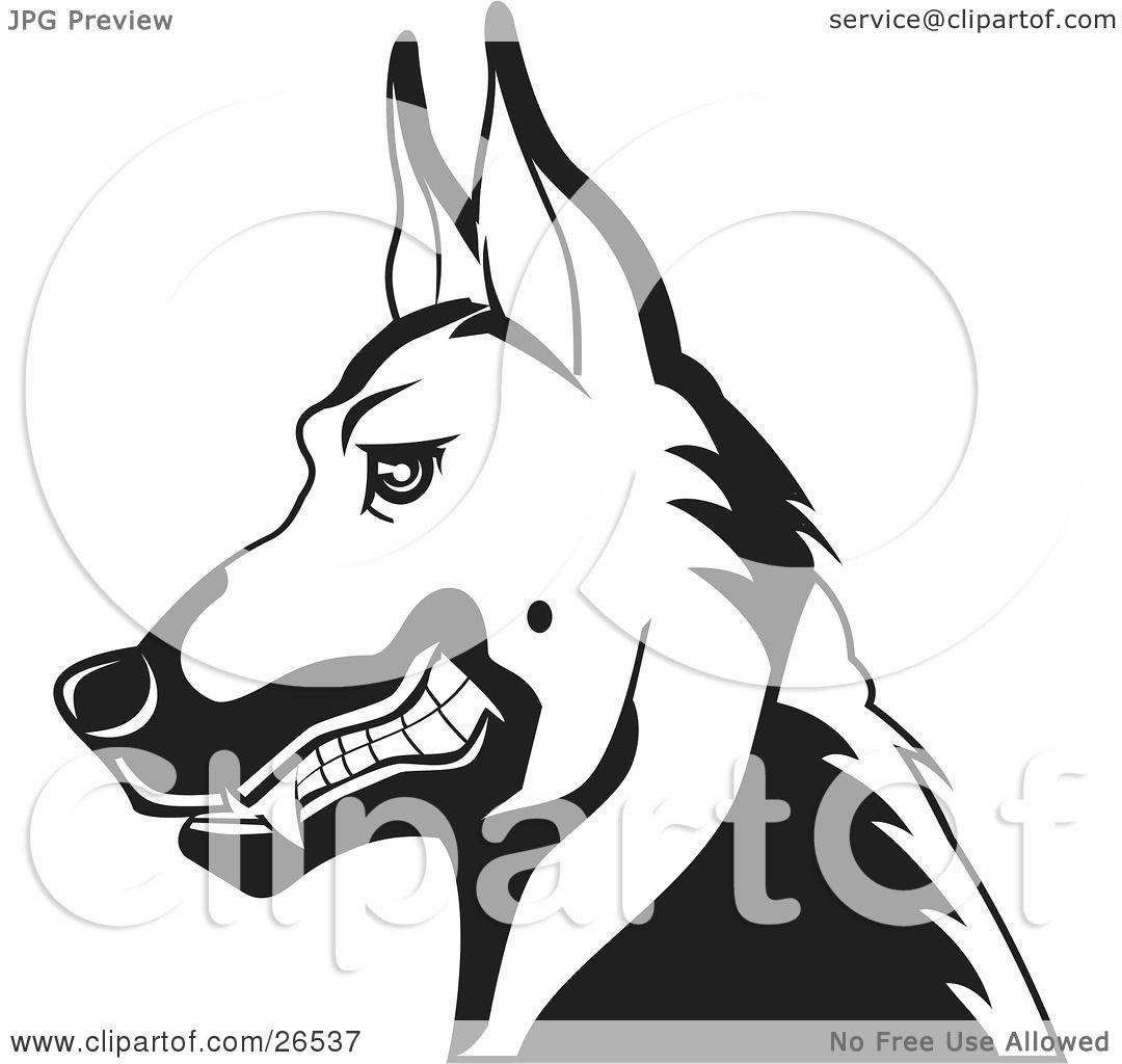 Growling Dog Drawing