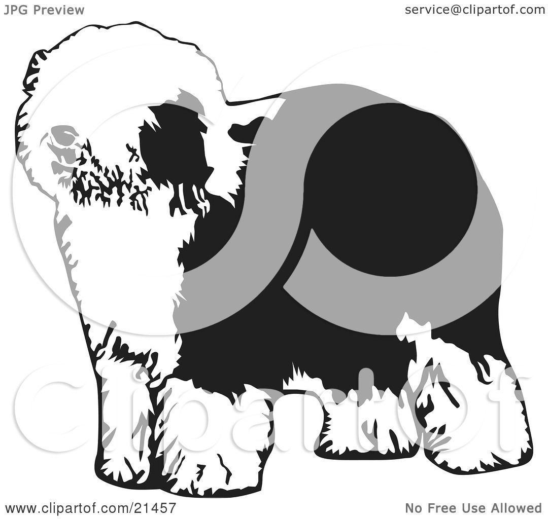 Clipart Illustration of a Hairy Dulux Or Old English Sheepdog ...