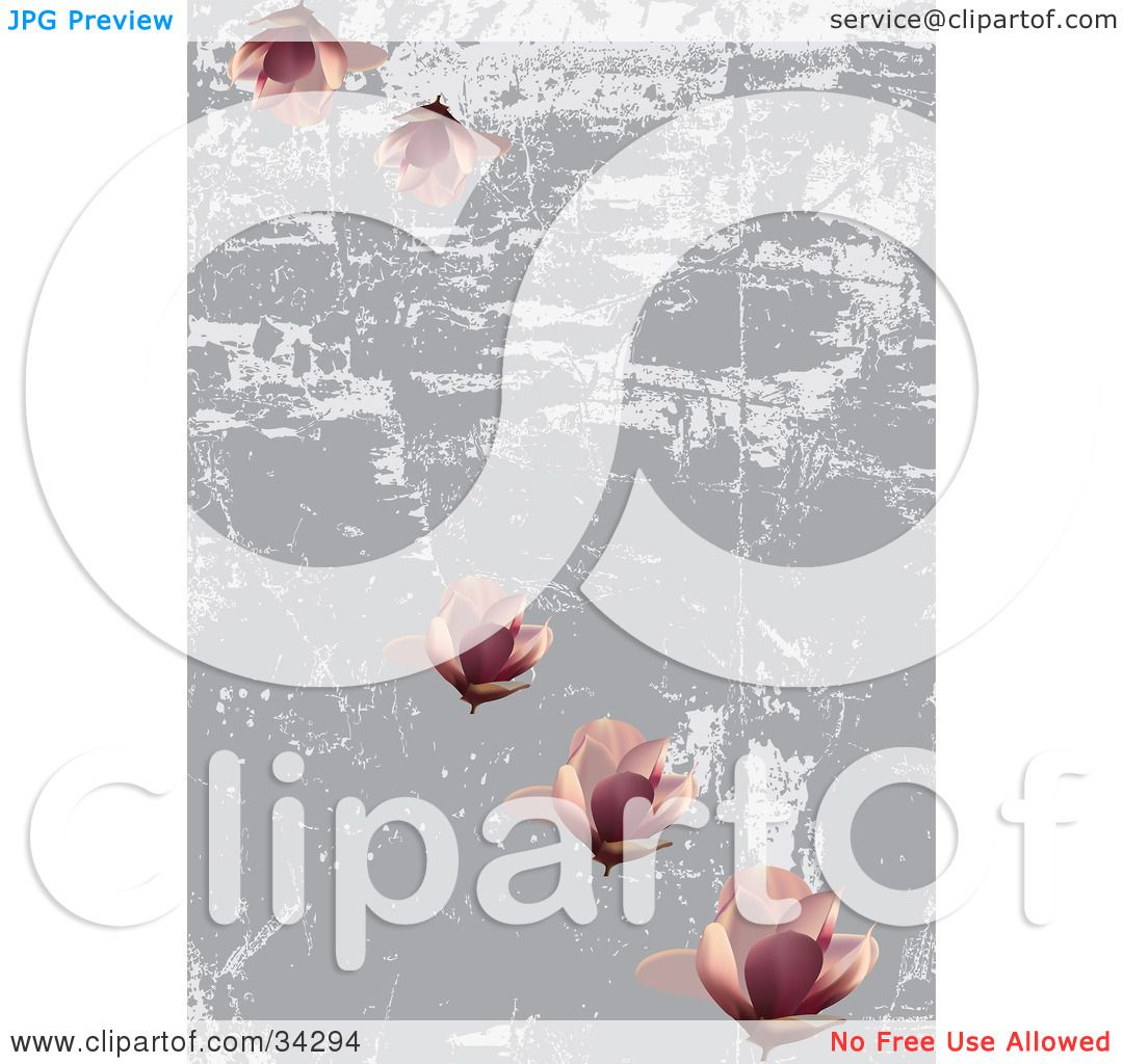 Clipart illustration of a pretty pink lotus flowers on a scratched clipart illustration of a pretty pink lotus flowers on a scratched gray and white grunge background by eugene izmirmasajfo