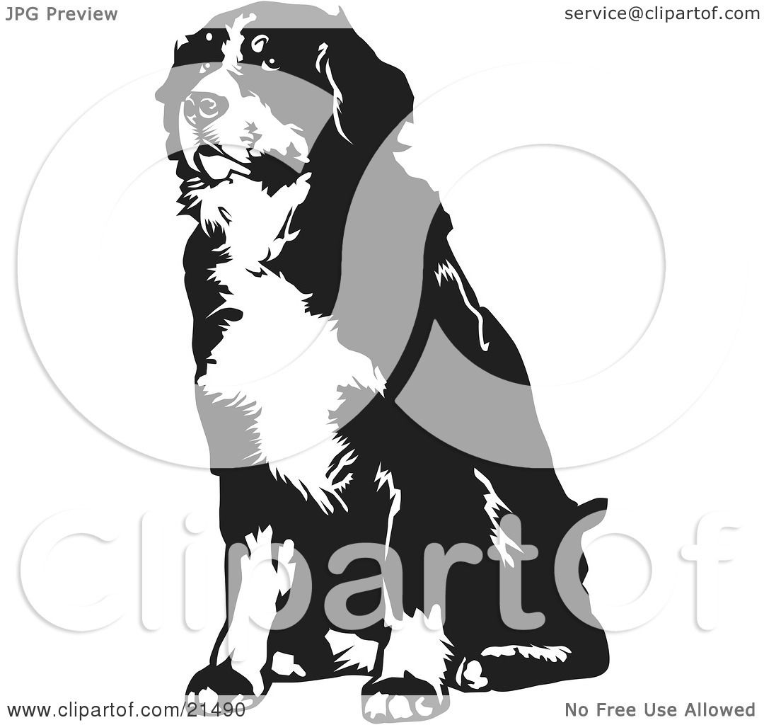 clipart illustration of a seated bernese mountain dog