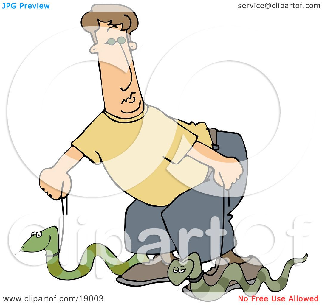 ... Illustration of a Silly Man Walking Two Green Pet Snakes On Leashes