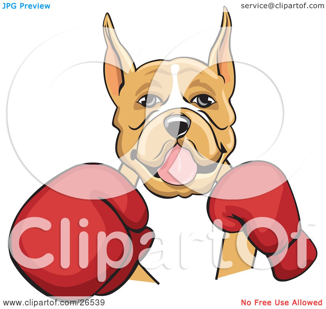 Clipart Illustration of a Tan And White Boxer Dog With Cropped Ears ...