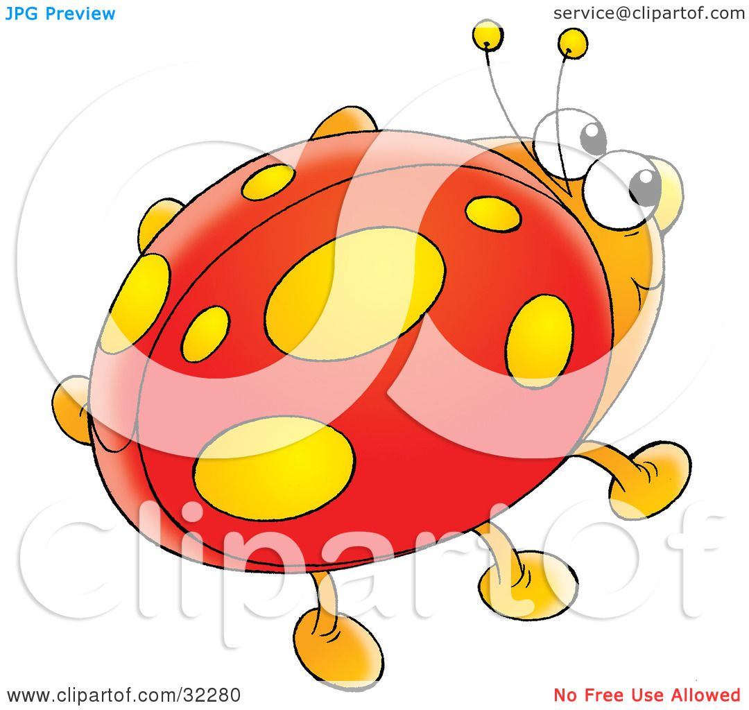 orange ladybug clip art u2013 clipart free download