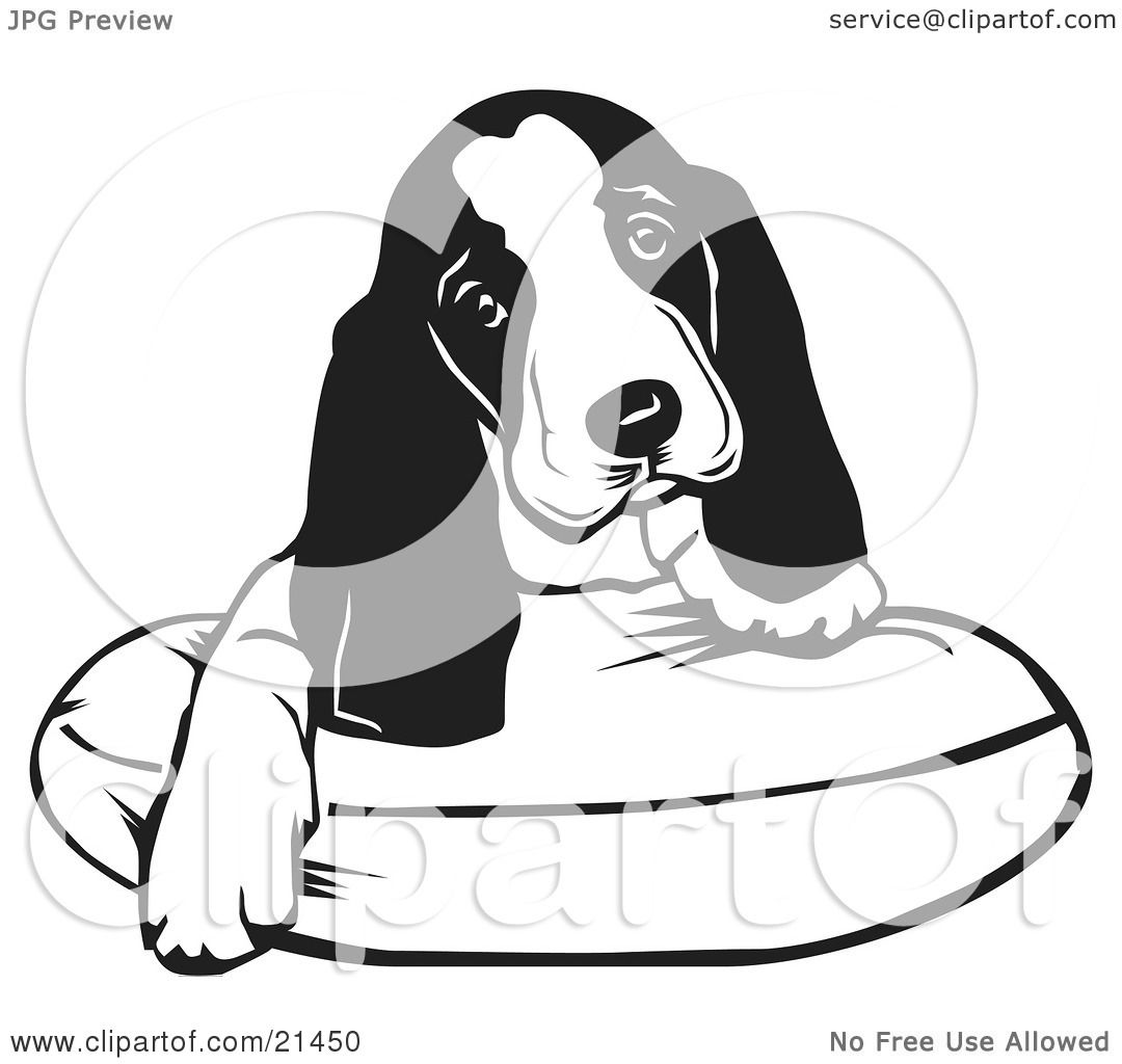 Id J 3840491 as well Adorable Basset Hound Puppy Dog With Long Ears Sitting On A Dog Bed And Tilting His Head Curiously 21450 likewise Cartoon Black And White Outline Design Of A Girl Afraid Of Spiders 1048323 also Pi Day 2015 Shirt as well Black And White Line Art Of A Happy Boy Throwing Supplies On The Last Day Of School 1192290. on how long is 13 centimeters