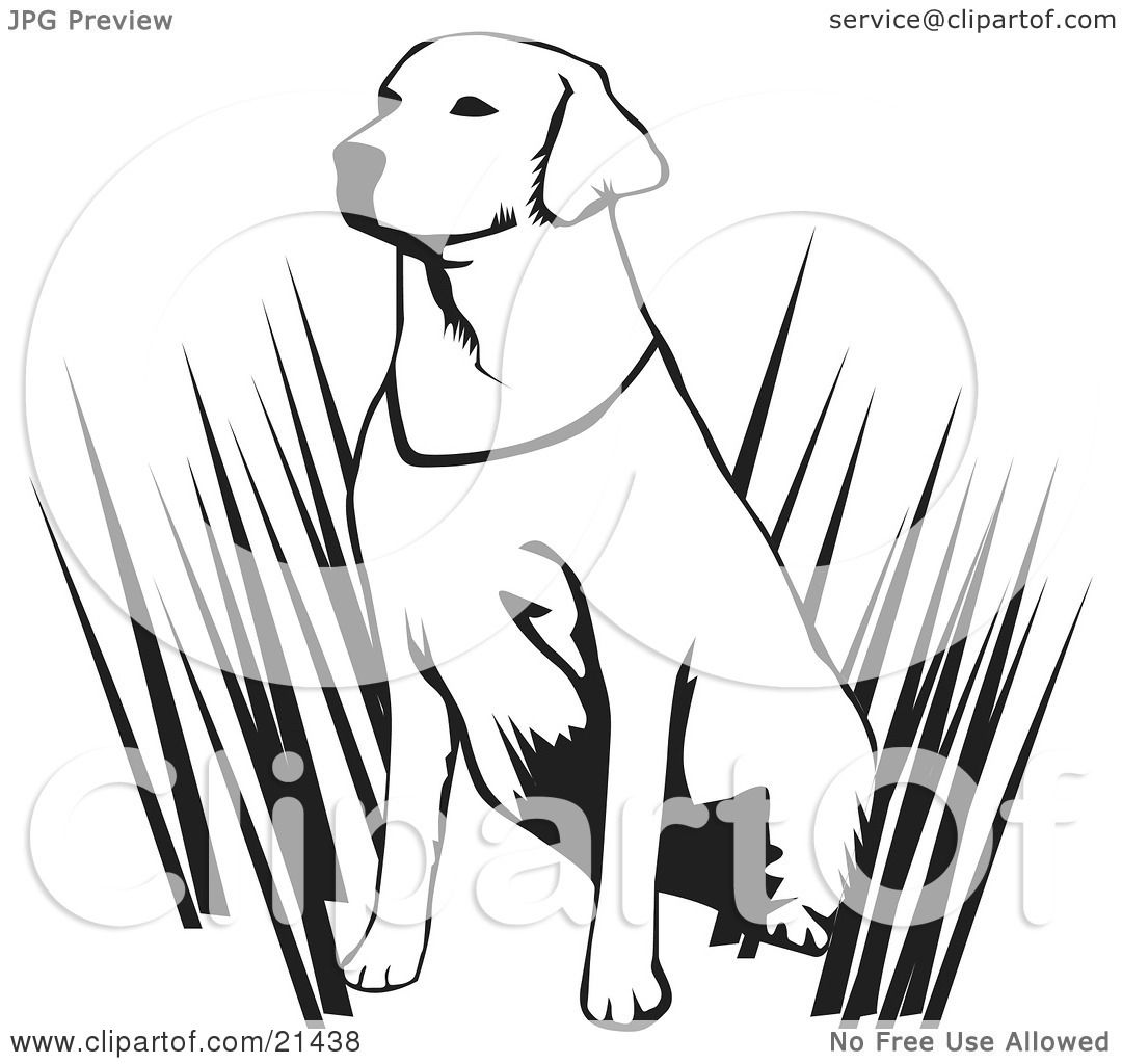 clipart illustration of an alert labrador retriever dog hunting with his master sitting in tall. Black Bedroom Furniture Sets. Home Design Ideas