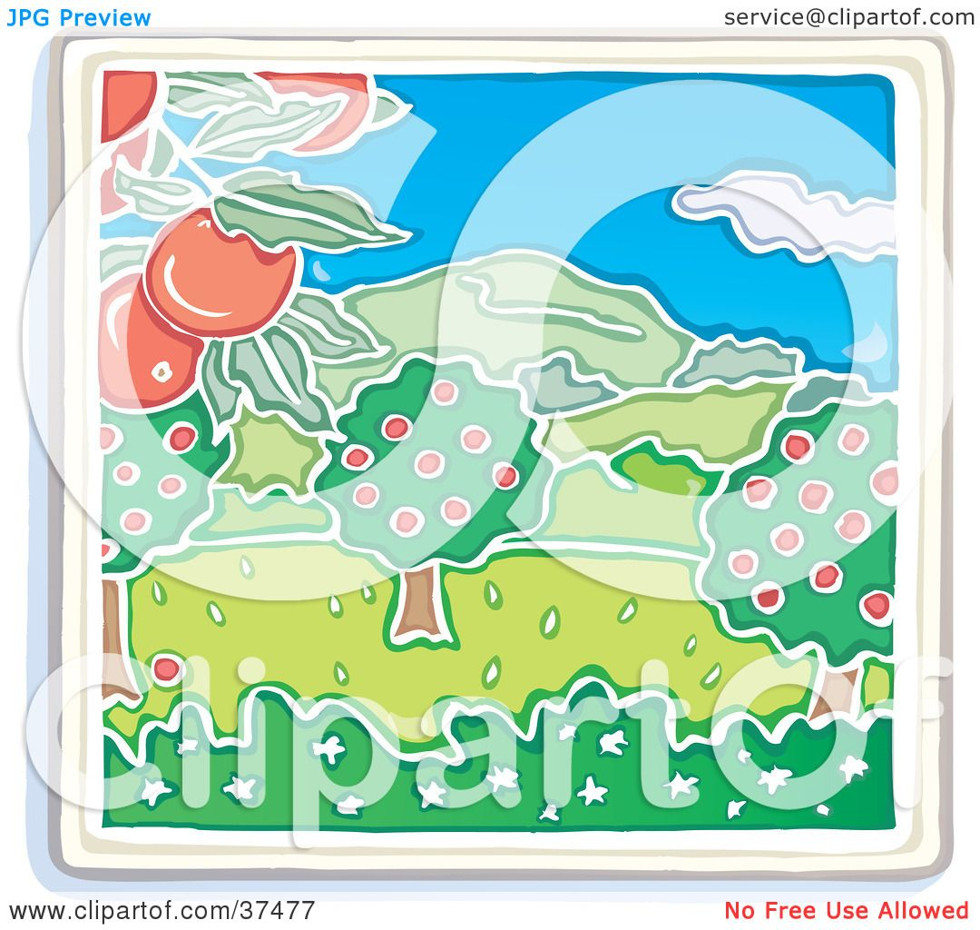 clipart illustration of an apple tree orchard growing red fruits