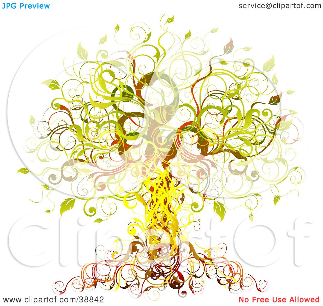 Displaying 20> Images For - Vine Tree Drawing...